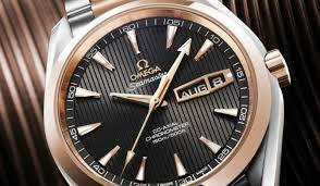 Omega Seamaster Aqua Terra Annual Calendar copy watches